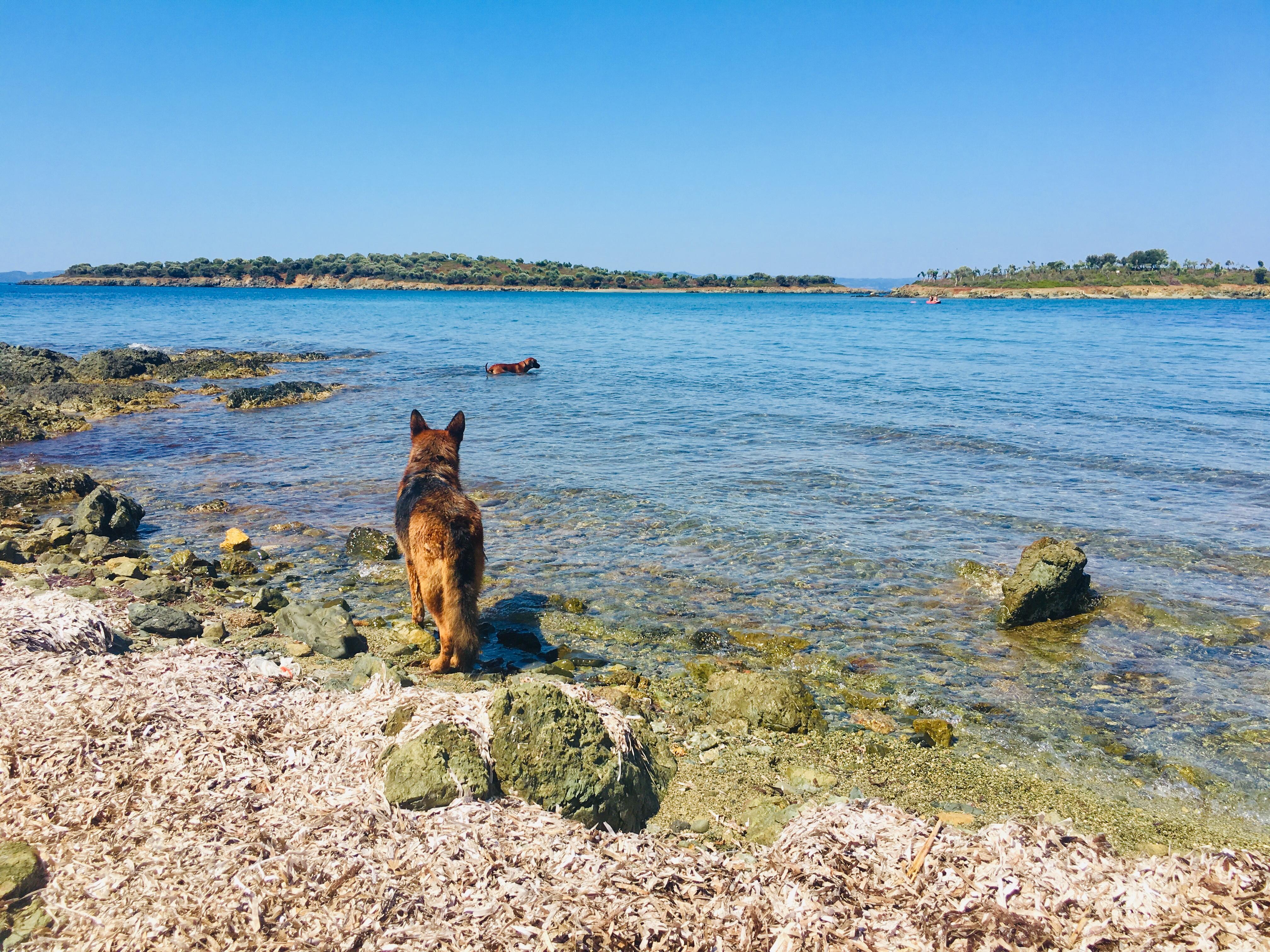 Sithonia, Penisola Calcidica (Grecia)